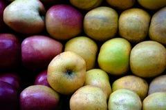 ny marknad utomhus- paris för äpplen Royaltyfri Fotografi