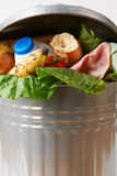 Ny mat i soptunnan som illustrerar avfalls Royaltyfria Bilder