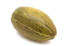 ny melon Arkivbilder