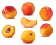 Ny mogen aprikos för stor samling, helhet, skiva, snitt i halv intelligens royaltyfria foton
