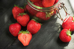 ny mogen jordgubbe Arkivfoton