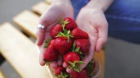 Ny mogen jordgubbe i händerna av en härlig kvinna lager videofilmer