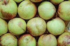 Ny mogen persikabakgrund Arkivfoto