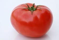 ny mogen tomat Royaltyfri Fotografi