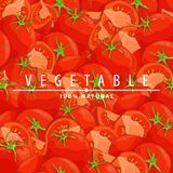 Ny mogen tomatillustration Royaltyfria Bilder