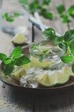 Ny mojito med citronen royaltyfri foto
