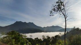 Ny morgonluft arkivbilder