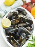 ny mussla arkivbild