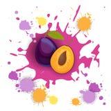 Ny naturlig mat för Plum Fruit Logo Watercolor Splash design stock illustrationer