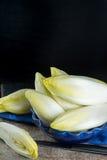 Ny och sund sallad för cikoria (witloof) på en platta Diet- mig Arkivfoton