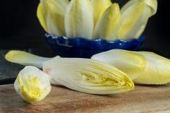 Ny och sund sallad för cikoria (witloof) på en platta Diet- mig Arkivfoto
