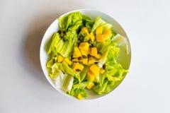 Ny och sund vegetarisk sallad med grönsallat och mango på vit bakgrund Royaltyfria Foton