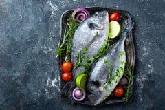 Ny okokt Dorado fisk eller havsbraxen med ingredienser för att laga mat på mörk bakgrund royaltyfri fotografi