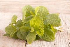 Ny organisk citronbalsam på trä Royaltyfria Bilder