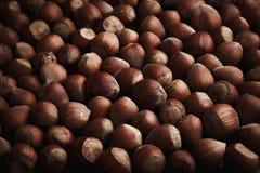 Ny organisk filbertsnöt Hasselnötter bakgrund och textur royaltyfri bild