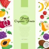 Ny organisk frukt - modern färgrik vektorillustration Royaltyfri Fotografi