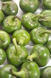 Ny organisk grön körsbärsröd peppar Royaltyfria Foton