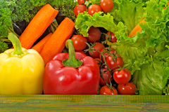 Ny organisk grönsak Arkivbilder