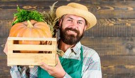 Ny organisk grönsakask Bondesugrörhatten levererar nya grönsaker Hemsändning för nya grönsaker Gladlynt man arkivbilder