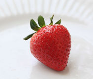 ny organisk jordgubbe Arkivfoto