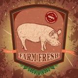 Ny organisk lantgård Tappningetikett med svinet på grungebakgrund Vektor Illustrationer