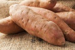 Ny organisk orange sötpotatis arkivfoto