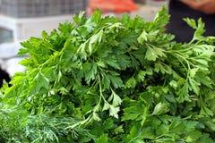 ny organisk parsley Persiljabakgrundstextur Grönsakmodell Grön dilltapet grön ört Sunt äta för mat En bi arkivfoto