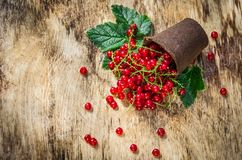 Ny organisk röd vinbär Spridd röd vinbär på träbakgrund Royaltyfri Fotografi