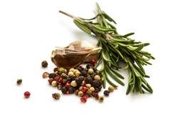 Ny organisk rosmarinar, peppar och vitlök på vit Royaltyfri Bild