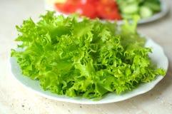 Ny organisk salladfrisee och skivade grönsaker på de vita plattorna på trätabellen Royaltyfri Foto