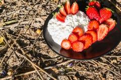 Ny ost och saftiga jordgubbar Arkivbilder