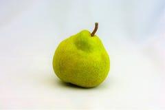 Ny Packham päronfruktträdgård Arkivfoton