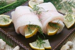ny pangasius för fisk Fotografering för Bildbyråer