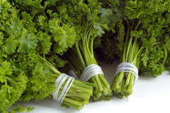Ny parsley Arkivbild