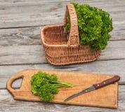 ny parsley Arkivbilder