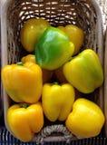 ny peppar för klocka Royaltyfria Foton
