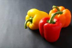 Ny peppar med vatten tappar på den gråa bakgrunden Arkivfoton
