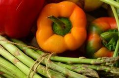 Ny peppar och grupp av sparris Arkivbild