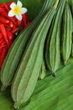 Ny peppar och zucchini Fotografering för Bildbyråer