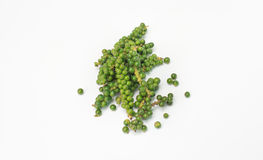 Ny peppar på vit bakgrund Fotografering för Bildbyråer