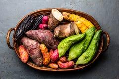 Ny peruansk latin - amerikansk grönsakcaigua, sötpotatisar, svart havre, camote, yuca arkivbilder