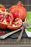 Ny pomegranate Royaltyfri Fotografi