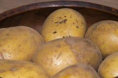 Ny potatis från bonden Arkivfoton