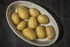 Ny potatis i en bunke royaltyfri bild