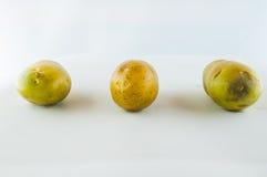 Ny potatis som isoleras på vitbakgrundsslut upp Fotografering för Bildbyråer