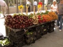 ny produce Royaltyfria Foton