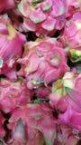 Ny röd drakefrukt Royaltyfria Foton