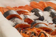 Ny röd fisk i is Royaltyfri Fotografi