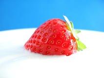 ny röd jordgubbe Royaltyfria Bilder
