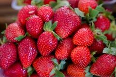 Ny röd jordgubbe i den plast- asken som är klar för försäljning i fruktmarknaden royaltyfria bilder